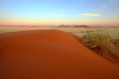 Red sand dune at Elim Dunes Royalty Free Stock Image