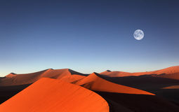 Red sand dune, Sossusvlei, Namibia Royalty Free Stock Images
