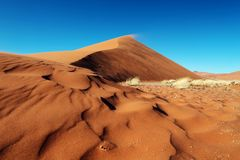 Red Sand dunes. Of Namibia Royalty Free Stock Image