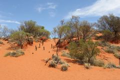 Red sand dunes n the desert along the Lasseter Highway, Australia Royalty Free Stock Images