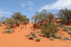 Red sand dunes n the desert along the Lasseter Highway, Australia Royalty Free Stock Images