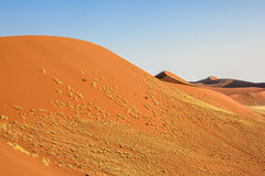 Red sand dunes in Namibia Stock Image