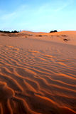 Red Sand Dunes. Sunset Stock Photos