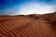 Red Sand Dunes. Sunset Stock Photography