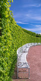 Red sand, green leaf wall, blue sky and white bench arrow in Saint Petersburg suburbs in summer Stock Photography