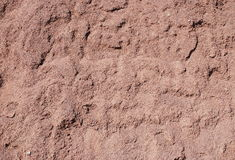 Red sand texture Stock Image