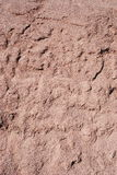 Red sand texture Royalty Free Stock Photo