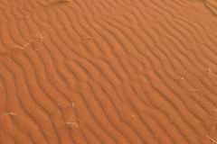 Red sand waves. Detailed picture of the curly surface of a red sand dune in the great namib desert stock photo