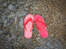 Red sandal Royalty Free Stock Images