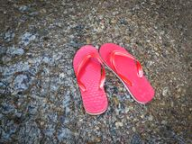 Red sandal Royalty Free Stock Photo