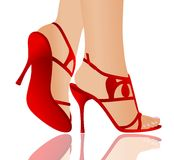 Red sandals. Vector illustration of red sandals,beautiful legs and reflection Royalty Free Stock Image