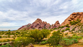 The red sandstone buttes of Papago Park near Phoenix Arizona. The red sandstone buttes of Papago Park, with its many caves and crevasses caused by erosion under Royalty Free Stock Photos