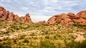 The red sandstone buttes of Papago Park near Phoenix Arizona. The red sandstone buttes of Papago Park, with its many caves and crevasses caused by erosion under Royalty Free Stock Images