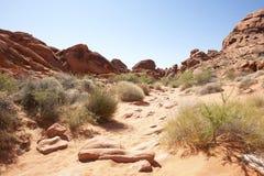 Red Sandstone Desertscape Stock Image