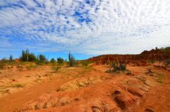 Cirrocumulus clouds over the Tatacoa Desert, Colombia. The red sandstone of the Tatacoa Desert in Colombia, under an intense blue sky and cirrocumulus clouds stock photos