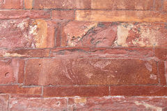 Red sandstone wall texture in Agra Fort Stock Image