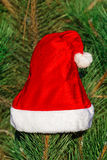 Red Santa Claus hat on fir branch in winter park outdoors Royalty Free Stock Photos