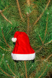 Red Santa Claus hat on fir branch in winter park outdoors Stock Photo