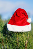 Red Santa Claus hat on fir branch, in winter park outdoors Stock Photos