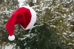 Red Santa hat hanging on a branch in the snow Royalty Free Stock Photos