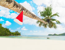 Red Santa hat on palm tree at exotic tropical beach. Holiday concept for New Years Cards. Seychelles, Mahe Stock Photos