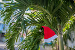 Red Santa`s hat hanging on palm tree at the tropical beach. Christmas in tropical climate concept.  Royalty Free Stock Photos