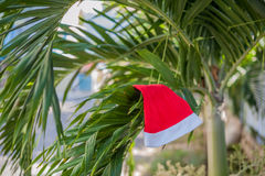 Red Santa`s hat hanging on palm tree at the tropical beach. Christmas in tropical climate concept.  Royalty Free Stock Images