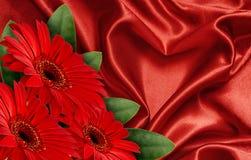 Red satin heart and gerbera flowers Stock Photos