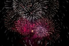 fireworks burst  Royalty Free Stock Photography