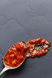 Red sauce flecked with chilli Royalty Free Stock Images