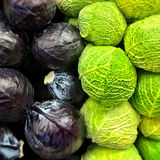 Red and savoy cabbage. At the market Stock Images