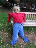 Red Scarecrow on a Bench stock photos