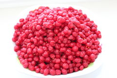 Red schizandra isolated Stock Images