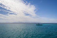 Red Sea. Near Hurghada, Egypt. Scubadiving boat in the background Stock Image