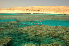 Red Sea. Snorkeling at Giftun reefs, Hurghada coast, Red Sea (Indian Ocean), Egypt, África Royalty Free Stock Photography