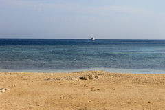 Red sea around Ras Mohamed Royalty Free Stock Photos