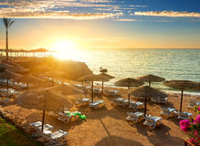 Red sea beach Royalty Free Stock Photos