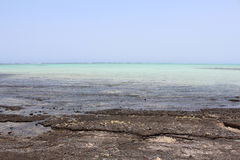 Red Sea beach Red sea Egypt Royalty Free Stock Image