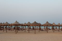 Red Sea beach Red sea Egypt Royalty Free Stock Photo