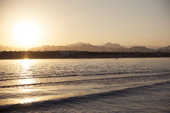 Red Sea beach Stock Photography