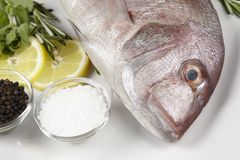A red sea bream with spices, lemon slices and herbals. A red sea bream, coarse salt, black pepper, lemon slices and pieces, oregano and rosemary royalty free stock image