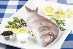 A red sea bream with spices, lemon slices and herbals. A red sea bream, coarse salt, black pepper, lemon slices and pieces, oregano and rosemary royalty free stock images