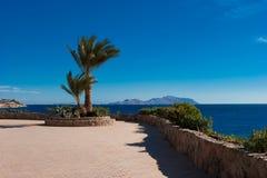 Red sea coast. In Sharm el Sheikh Royalty Free Stock Photos