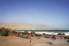 Red sea coast Royalty Free Stock Photos