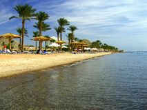 Red Sea coast, Sinai, Egypt Royalty Free Stock Photo