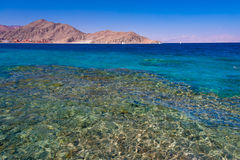 Red sea day Royalty Free Stock Photography