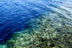 Red Sea - Egypt Stock Photography