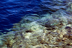 Red Sea - Egypt Stock Image