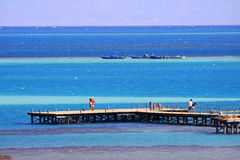 Red Sea in Egypt Stock Images