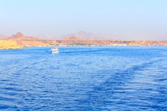 Red Sea in Egypt seascape Royalty Free Stock Photo